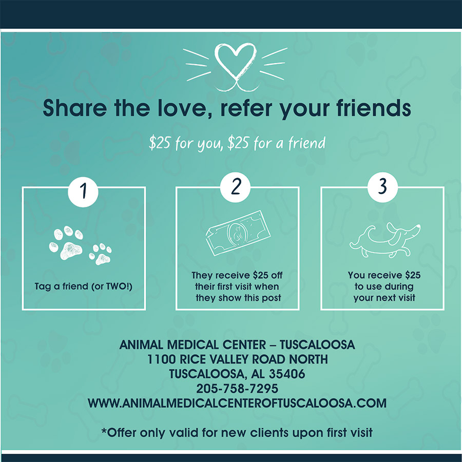 Refer a Friend Promotion