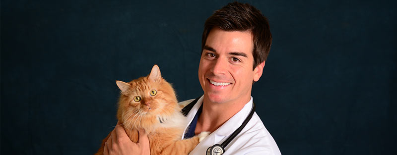 Animal Medical Center in Tuscaloosa and Northport AL