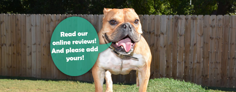 Animal Medical Center in Tuscaloosa, online reviews